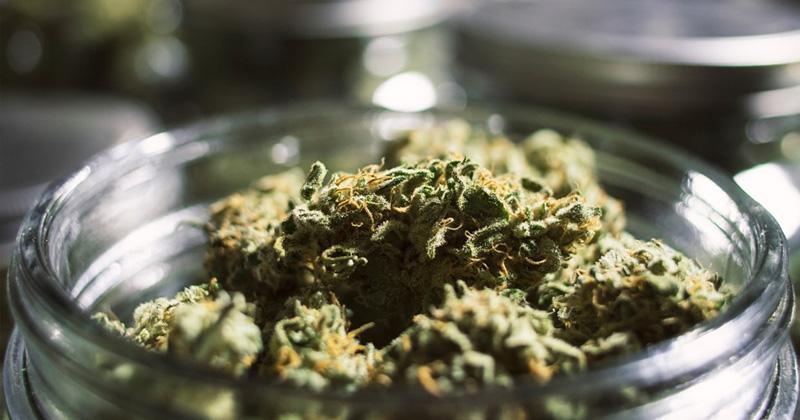 Taxes sur la légalisation du cannabis en Australie