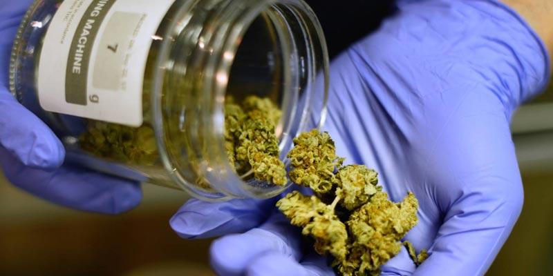 Cannabis et drogue dure