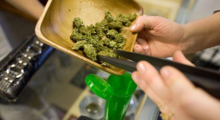Cannabis et soda