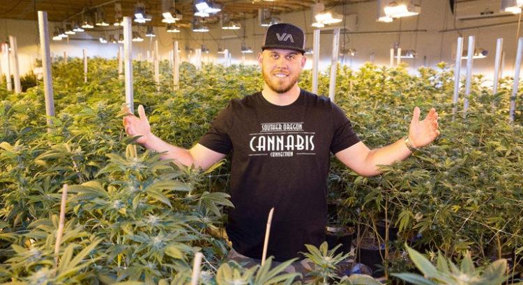 Markle's Sparkle cannabis
