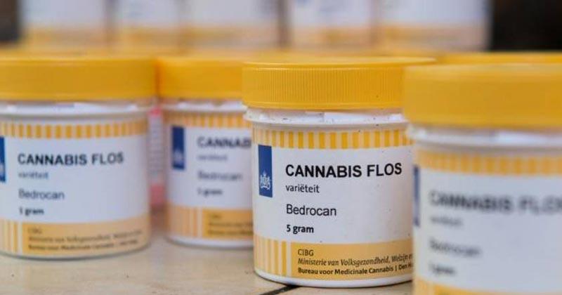 Demande en cannabis médical en Allemagne
