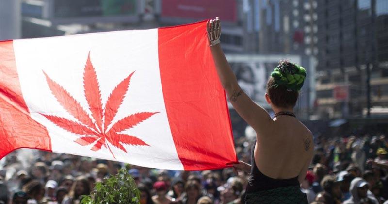 Légalisation du cannabis en octobre 2018