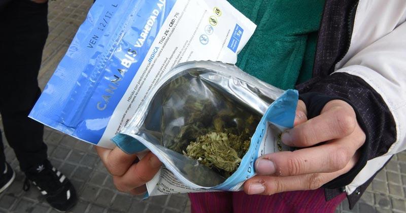Demande de cannabis en Uruguay