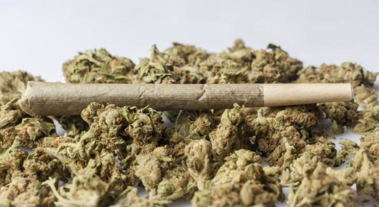 Nombre de consommateurs de cannabis dans le monde