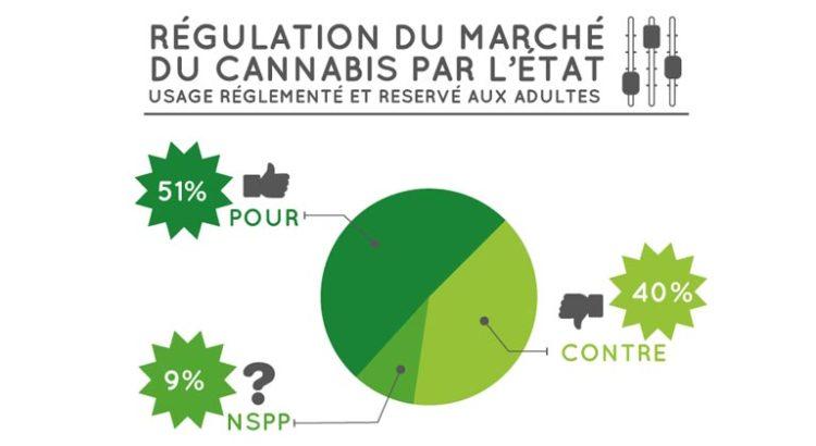 Sondage sur le cannabis en France