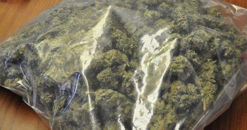 Syndicat police propose la légalisation du cannabis
