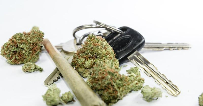 Californie cannabis conduite