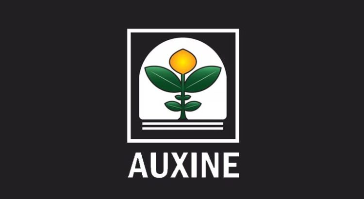 Procès Auxine