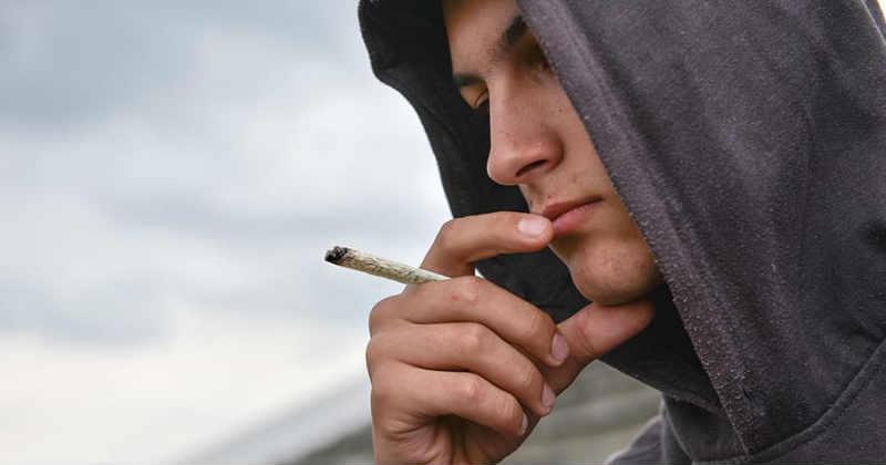 cannabis jeune
