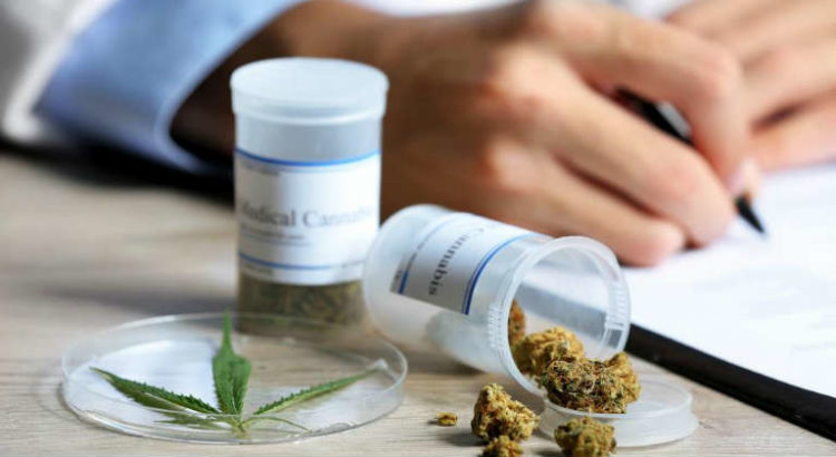 cannabis medical en france