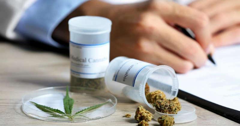 cannabis medical en france