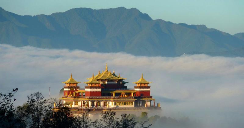 népal sommet chanvre cannabis