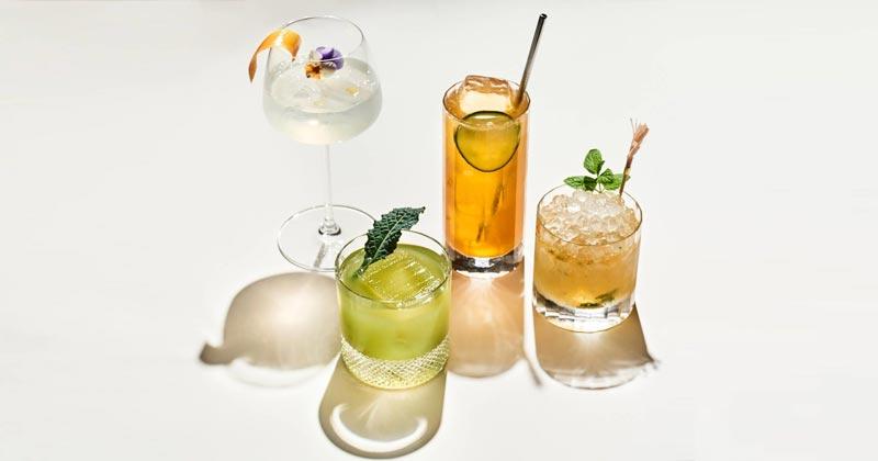 Recettes de cocktails au CBD