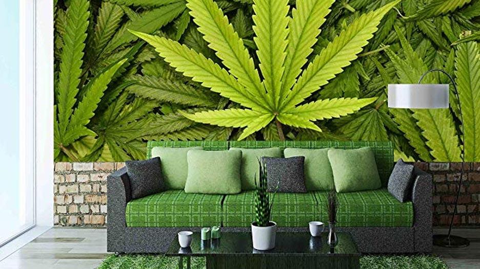 Feuille de cannabis au Québec