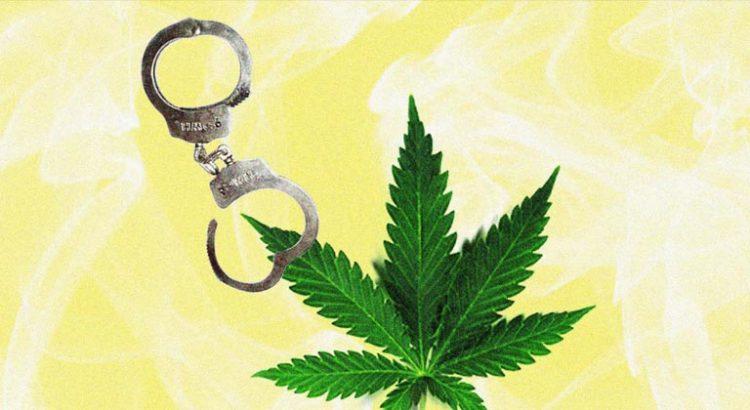 Amnistie pour le cannabis en Californie