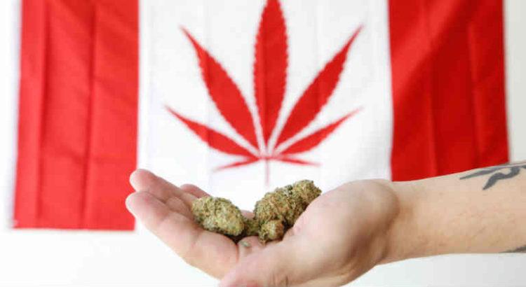 canada cannabis drapeau