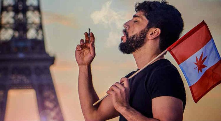 noman hosni histoires de weed