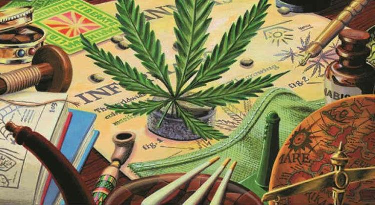 musée de la weed