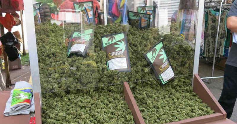 foire événements cannabis