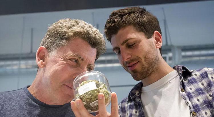 Sniffer du cannabis