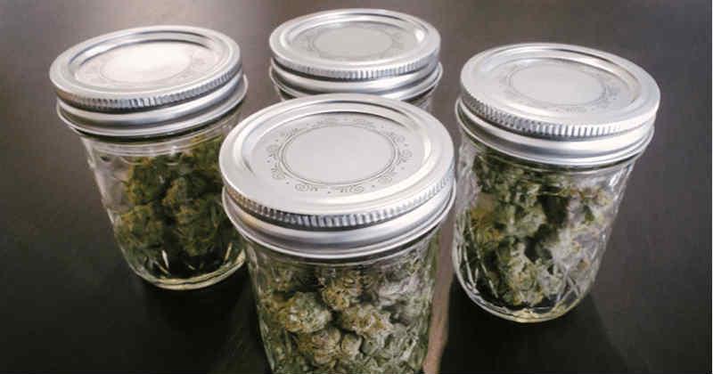 stockage cannabis