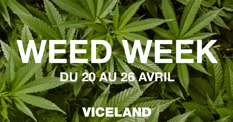 Weed Week Viceland 2019