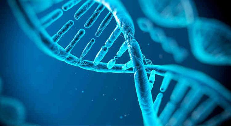 adn test génétique cannabis
