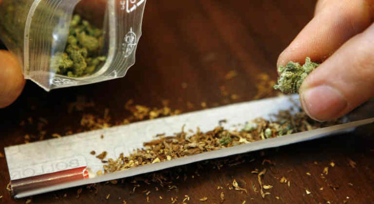 consommation de cannabis canada