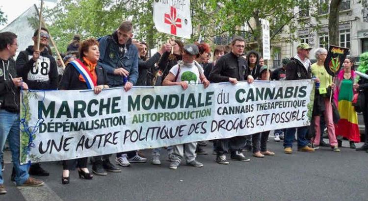 marche du cannabis