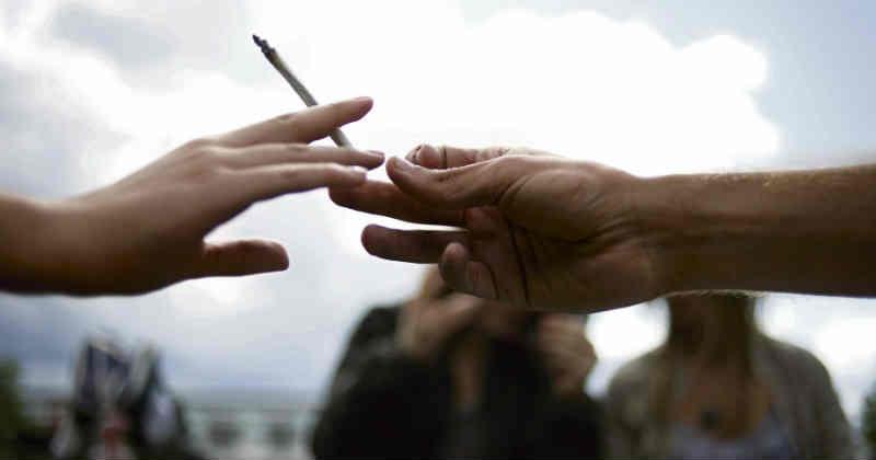 ONG cannabis réforme lettre ouverte