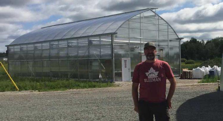 Canada une deuxième licence de microculture de cannabis attribuée en Ontario