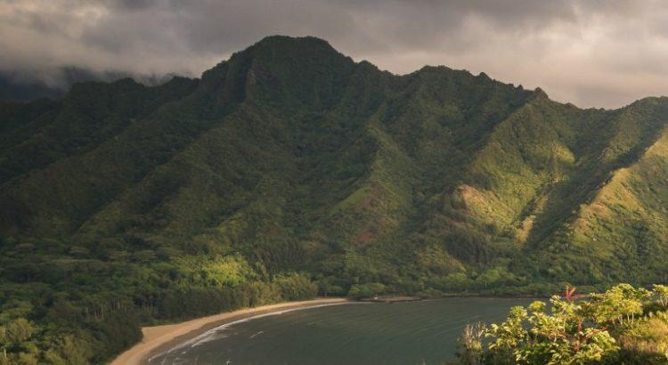 Hawaï décriminalise la possession de petites quantités de cannabis