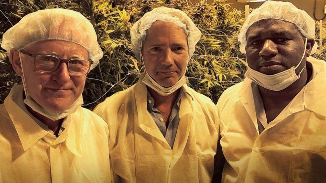 Royaume Uni : le cannabis récréatif pourrait être légalisé d'ici 10 ans