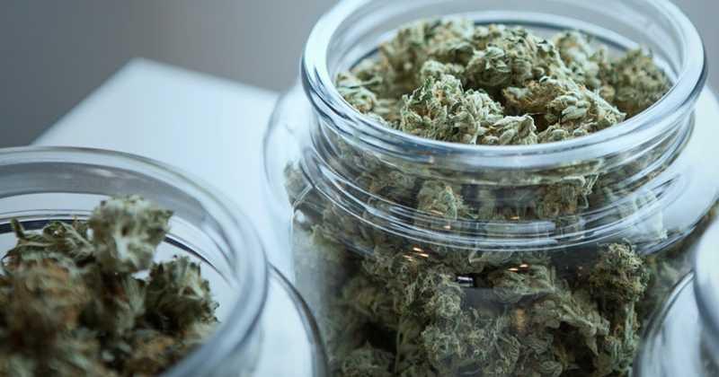 Etats-Unis : la DEA annonce des mesures pour faciliter les recherches sur le cannabis