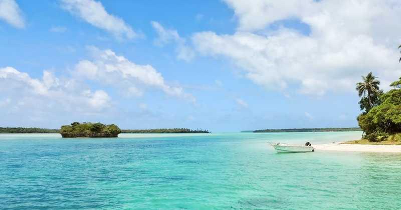 Le cannabis médical bientôt légalisé à la Barbade ?