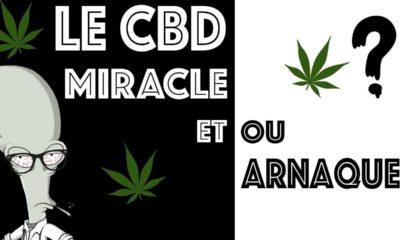 CBD miracle ou arnaque