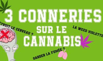 Conneries sur le cannabis