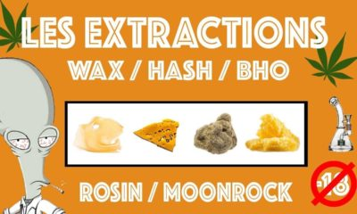 Extractions Wax Hash BHO Rosin et Moonrock