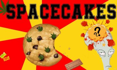 Spacecakes