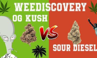OG Kush et Sour Diesel