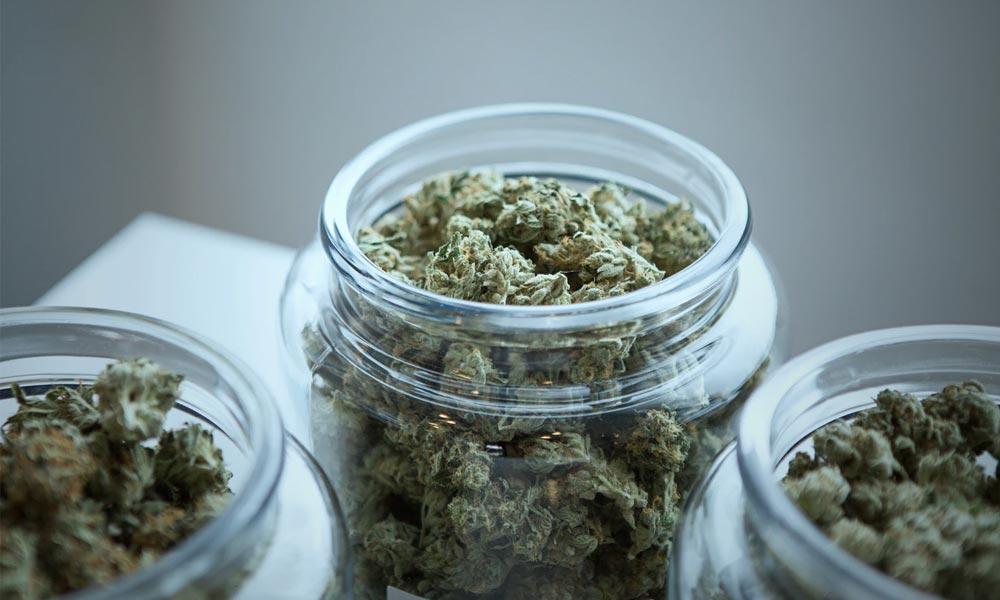 Banques et cannabis aux Etats-Unis