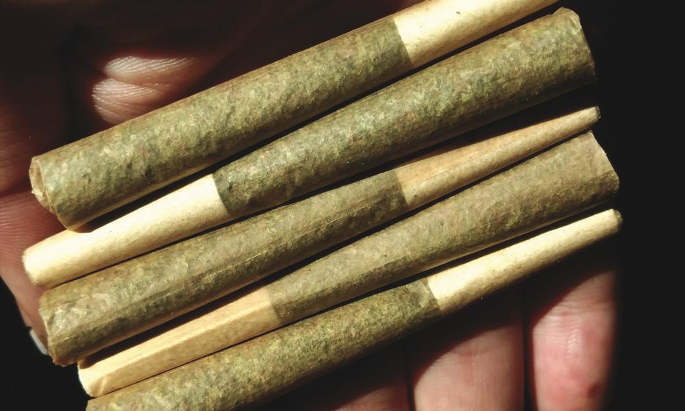 Impact du cannabis sur le travail au Québec