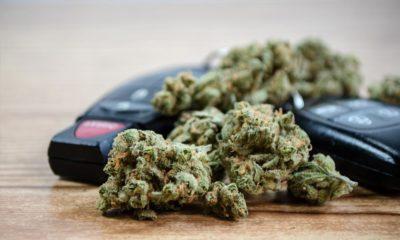 Cannabis au volant en Finlande