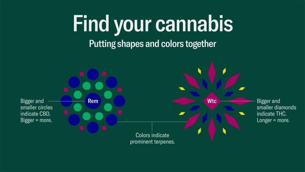 Classification des variétés de cannabis de Leafly