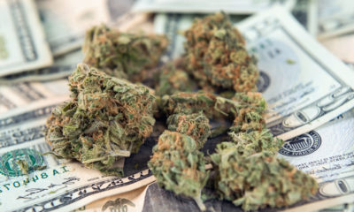 Légalisation fédérale du cannabis aux Etats-Unis
