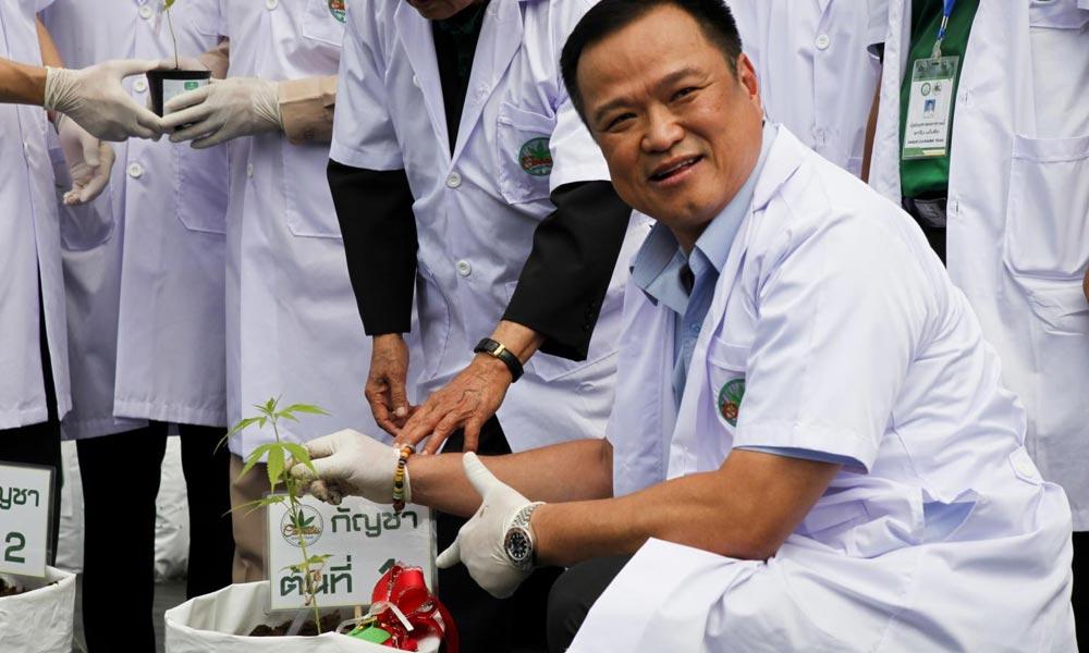 Ministre de la Santé thaïlandais et du cannabis médical