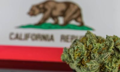 Taxes sur le cannabis en Californie