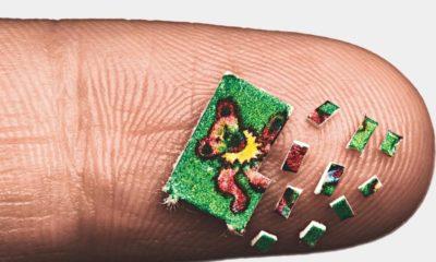 Microdosage de LSD