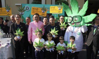 Ministre de la Thaïlande consomme du cannabis