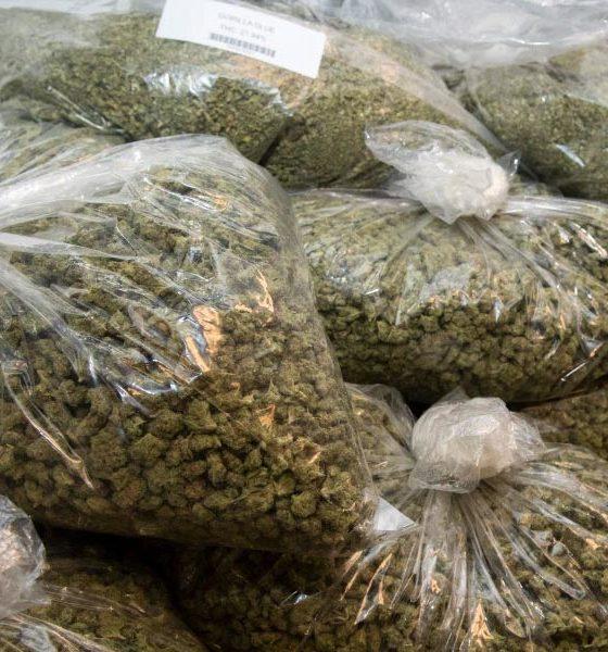 Taxe sur le cannabis